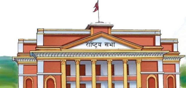 Rastriya-sava-election