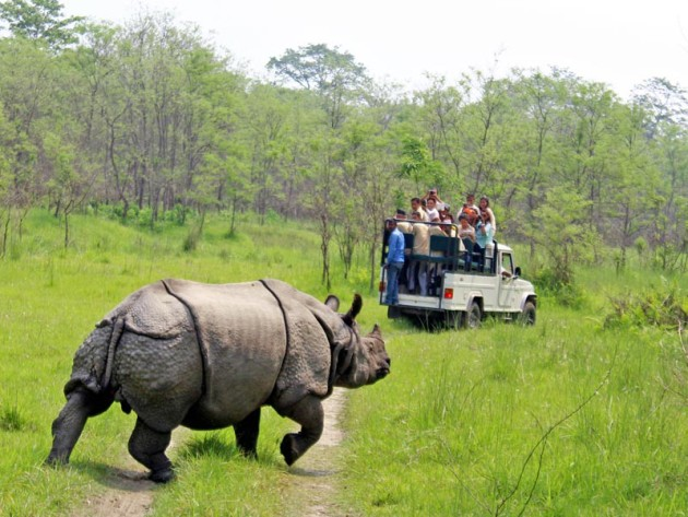 Chitwan_National_Park